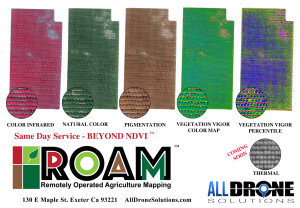 large all roam products