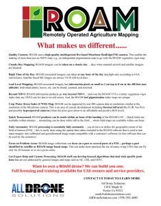 ROAM full page flyer for site